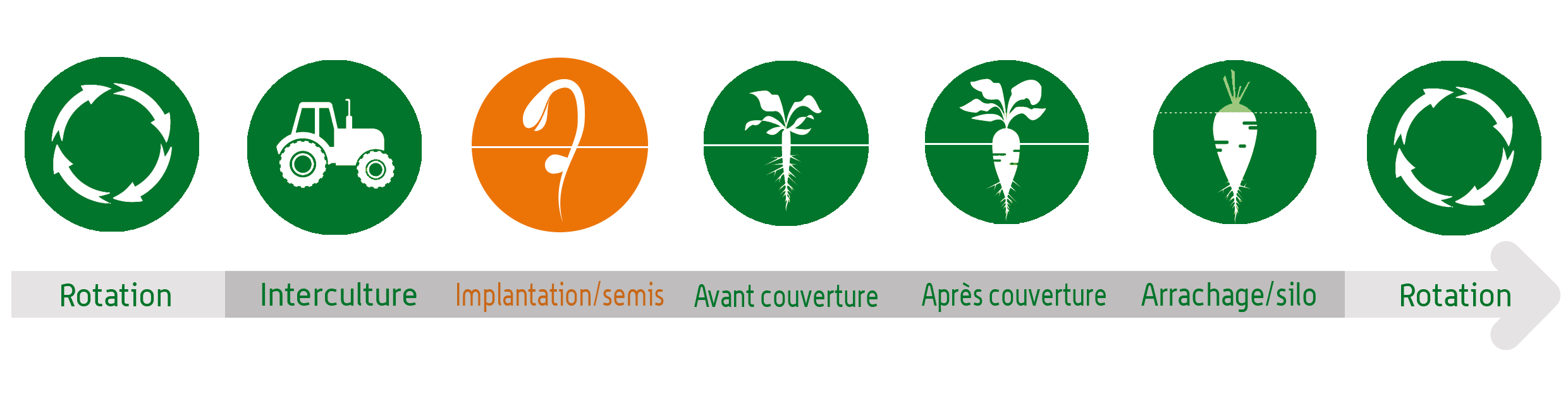Cycles saisons implantations